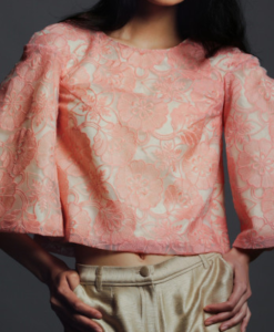 Best-out-of-waste-blouses-stylish-blouse-crop-top
