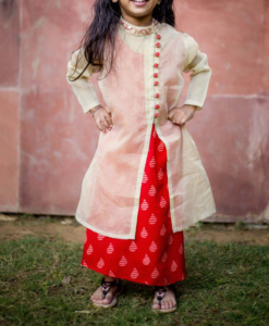 Best-out-of-waste-kids-wear-for-girls-Indo-western-gown-with-koti